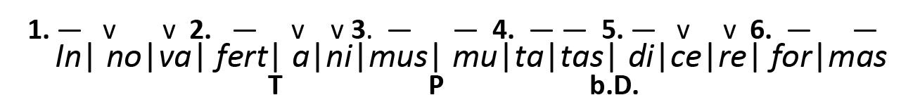 Metrik 33