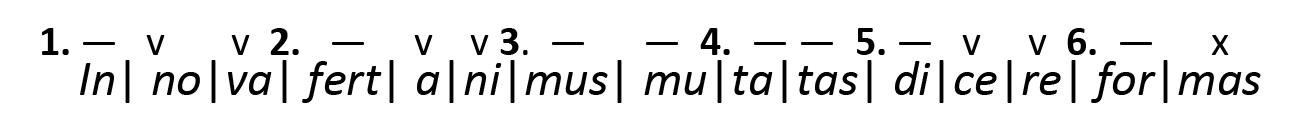 Metrik 28